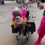 Pink Ribbon Ride 007